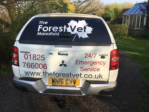 The Forest Vet Goes Mobile